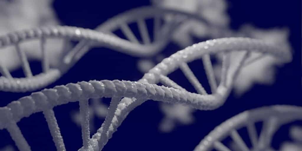 le-stockagedes-données-sur-ADN-devient-plus-pratique