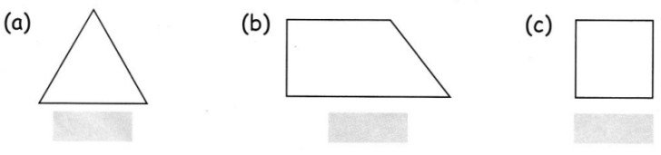 CBSE Class 5 Maths Does It Look the Same Worksheets 4