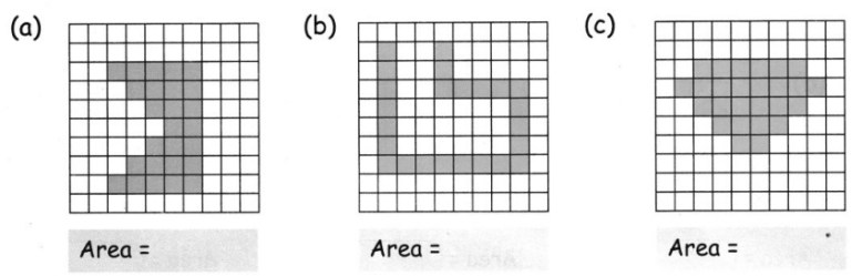 CBSE Class 5 Maths How Many Squares Worksheets 13