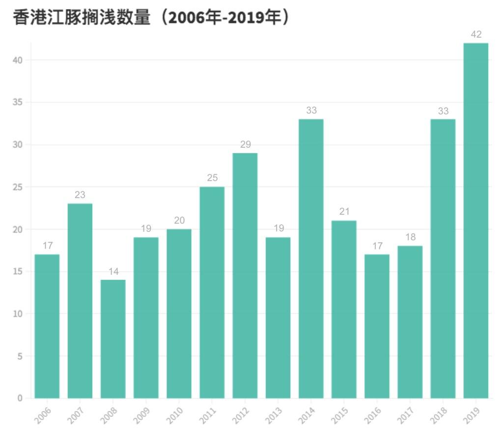 「只能確定10%死因」 香港江豚擱淺數量激增 原因成謎 | 環境資訊中心