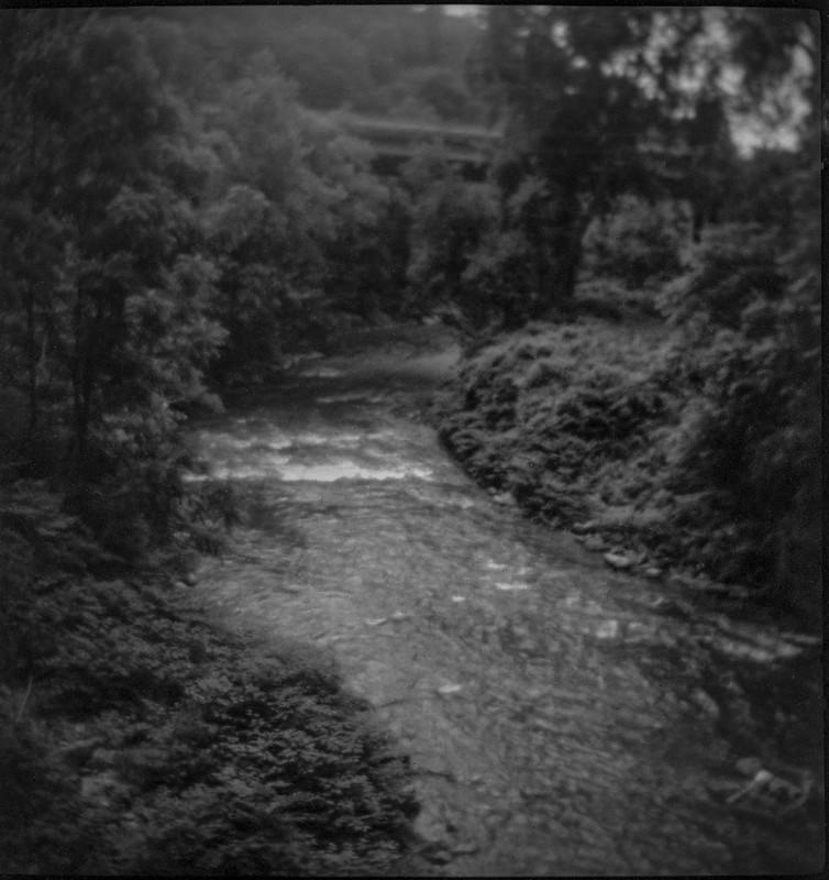 tributary, French Broad River, overpass, light rain, Asheville, NC, Linden Lindar box camera, Foma 200, Moersch Eco film developer, 6.27.20 (1 of 1)