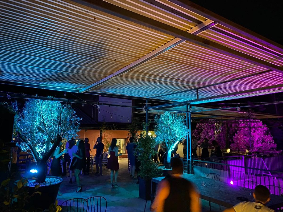 Roof Garden 2020