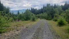 3 days on a singletrack around Mt St Helen's
