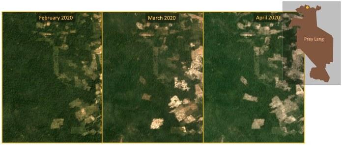 """最近普雷朗保護區北部遭受到的森林砍伐程度最為嚴重,大範圍砍伐面積已擴張至原始林。資料來源:Planet Labs, Inc. """"Monthly /Quarterly Mosaics."""" Accessed through Global Forest Watch on May 11, 2020."""