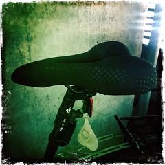 Terrance's New Saddle