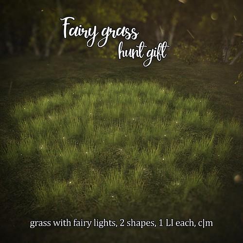 Fairy grass