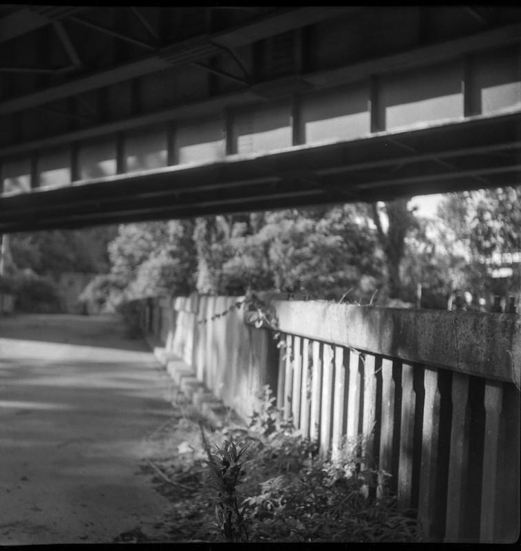old abandoned bridge, under the overpass, French Broad RIver, Asheville, North Carolina, Flektar twin lens reflex, Fomapan 200, Moersch Eco film developer, 7.12.20