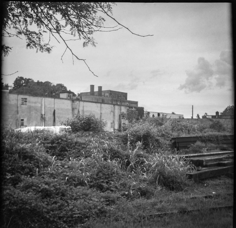 urban decay, behind Asheville Waste Paper Company, railroad district, Asheville, NC, Zeiss Ikonta M, Fomapan 200, Moersch Eco film developer, 7.15.20