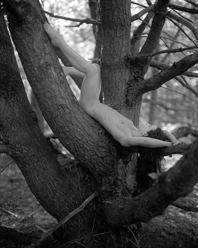 Keira in a Tree