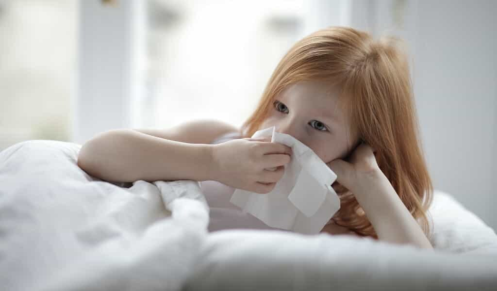 une-immunoprotéine-inhibe-le-sars-cov-2