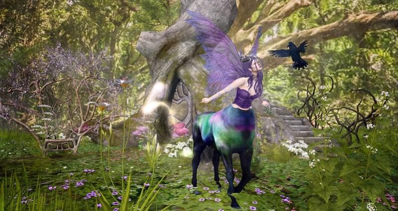 The Fairy Moors