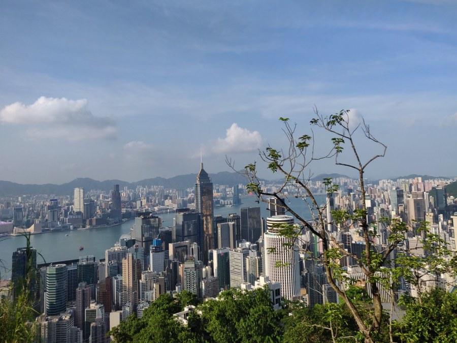 Bus Views Hong Kong
