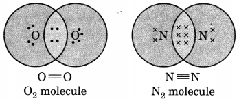 Carbon and its Compounds Class 10 Extra Questions with Answers Science Chapter 4, 8