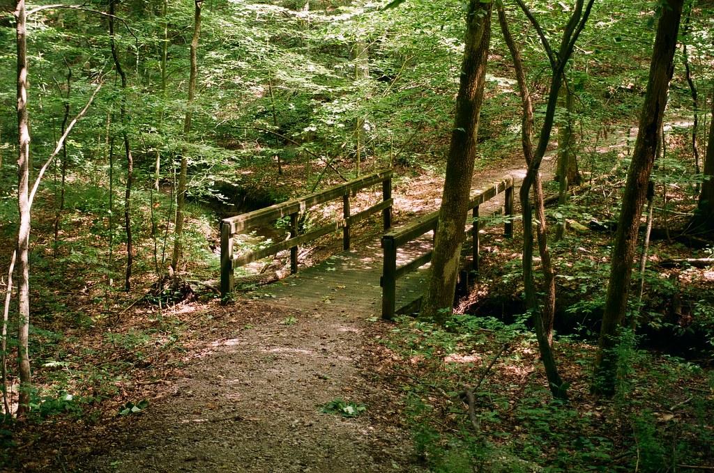 Bridge in McCormick's Creek SP