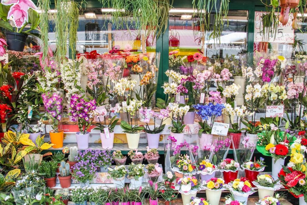 Mercato di Bolzano