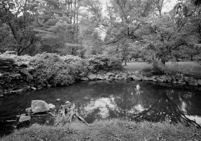 Geyser Creek 2