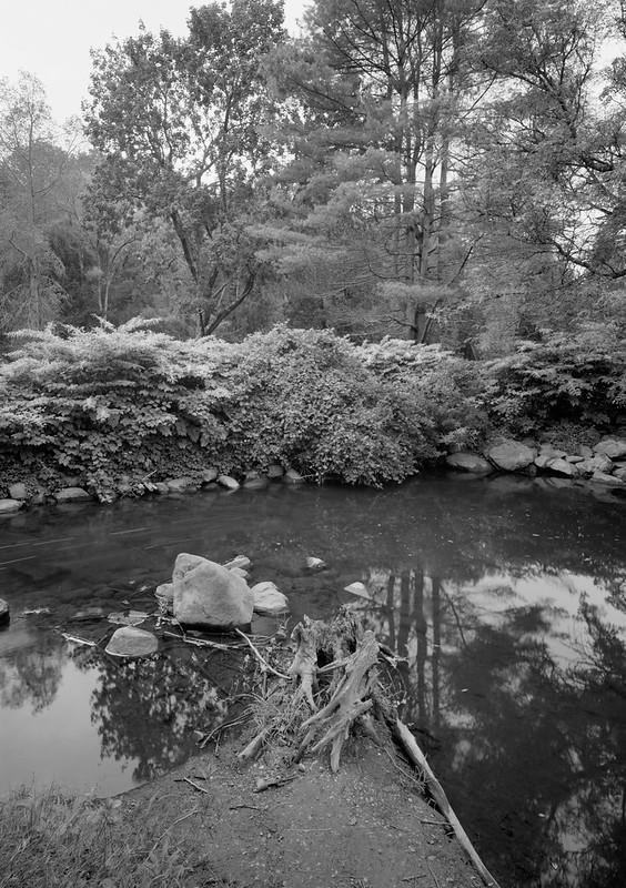 Geyser Creek 3