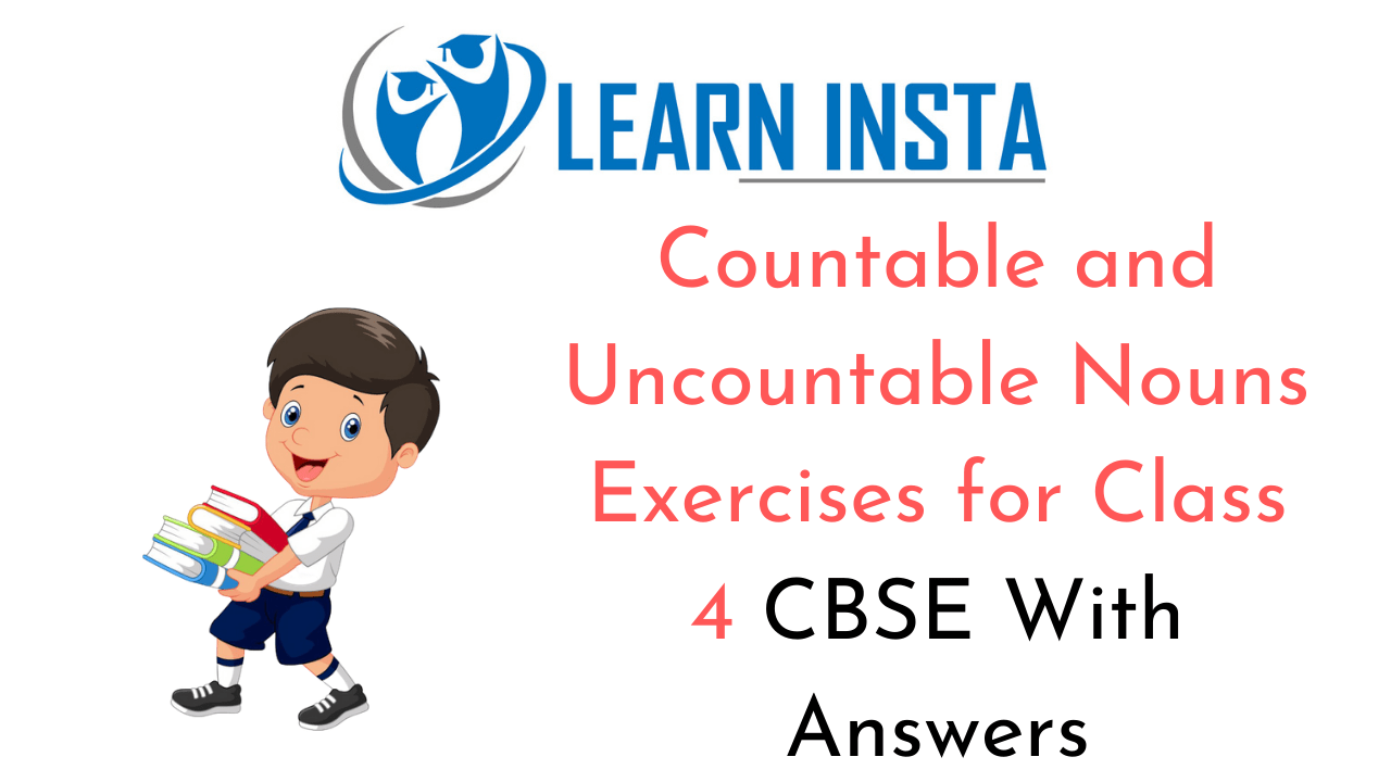 Countable and Uncountable Nouns Exercises for Class 4 CBSE with Answers
