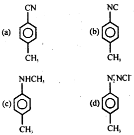 MCQ Questions for Class 12 Chemistry Chapter 13 Amines