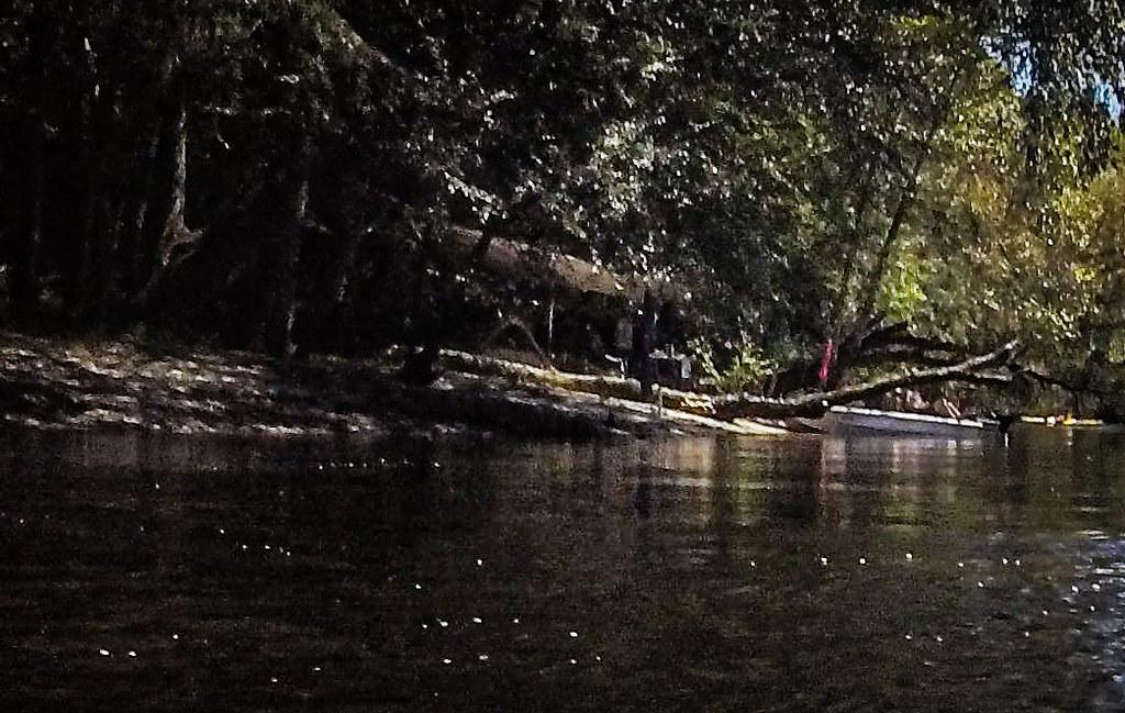 Edisto River-54