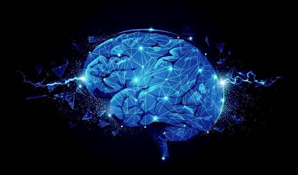 des-molécules-synthétiques-les-fonction-cérébrales