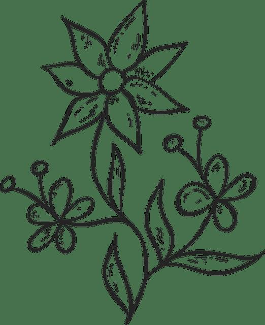 Gambar Flora Yang Mudah Digambar : gambar, flora, mudah, digambar, Gambar, Flora, Indah, Simple, Mudah, Ditiru, Warna, Hitam, Putih, Pontren.com