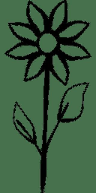 Lukisan Gambar Flora Yang Mudah Ditiru Dan Indah