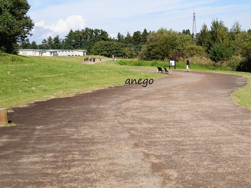三内丸山 縄文の道