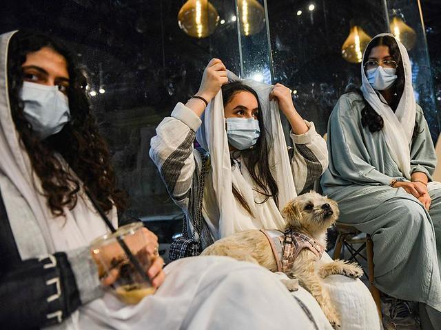 5770 The first dog café of Saudi Arabia opens in Khobar 03