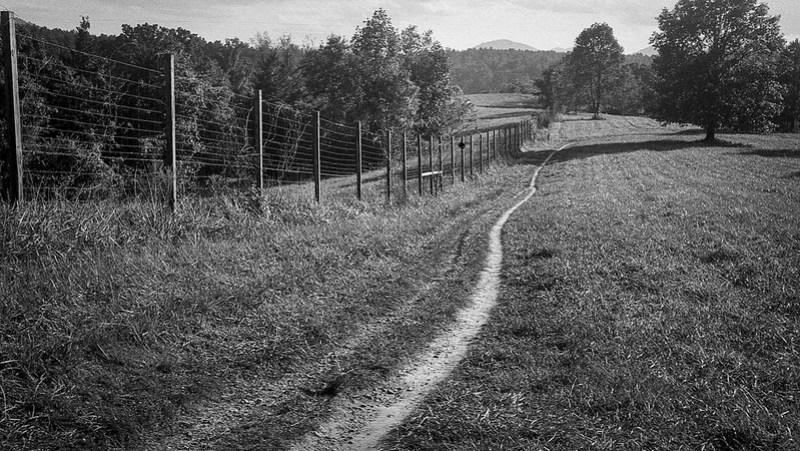 foot trail, fence, rolling pasture, Biltmore Estate, Asheville, NC, Kodak Bantam, folding 828 film camera, Kodak TMAX 400, HC-110 developer, 10.6.20