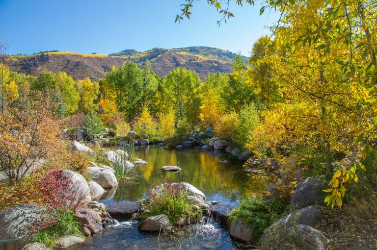 scene at John Denver Nature Sanctuary, Aspen