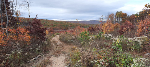 2020-10-24_Sleepy_Creek_WMA_025