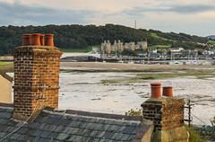 Conwy estuary & castle