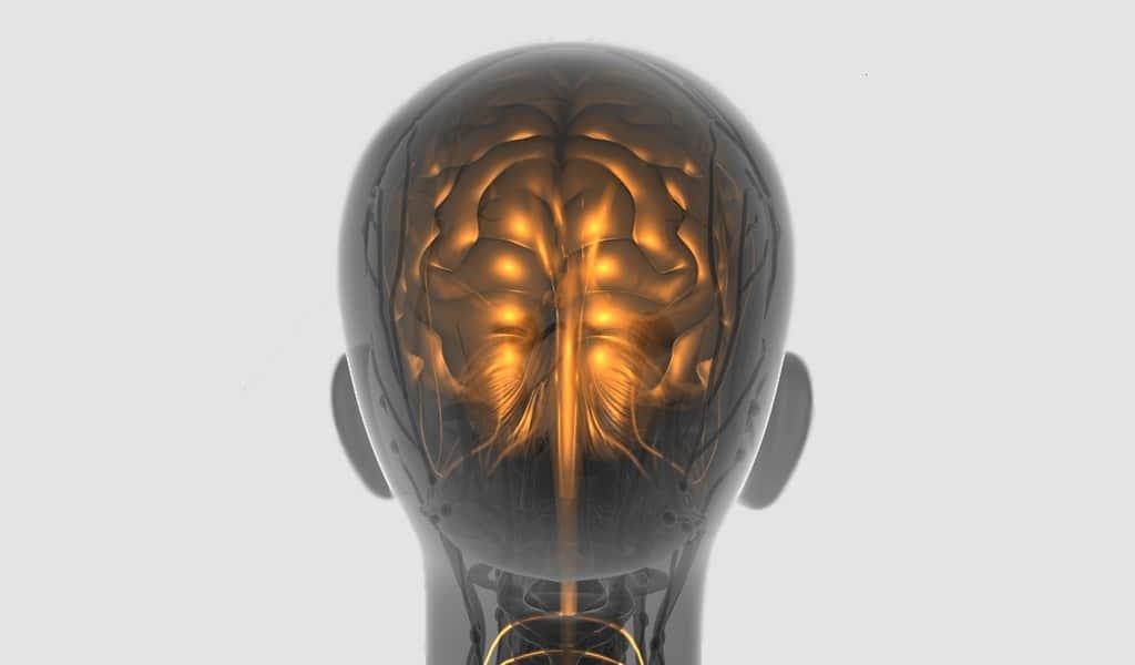 une-cellule-peut-métastaser-un-cancer-vers-le-cerveau