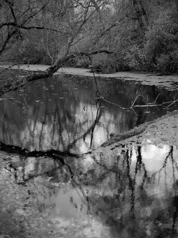 Reflections, Feeder Canal, Schuylerville