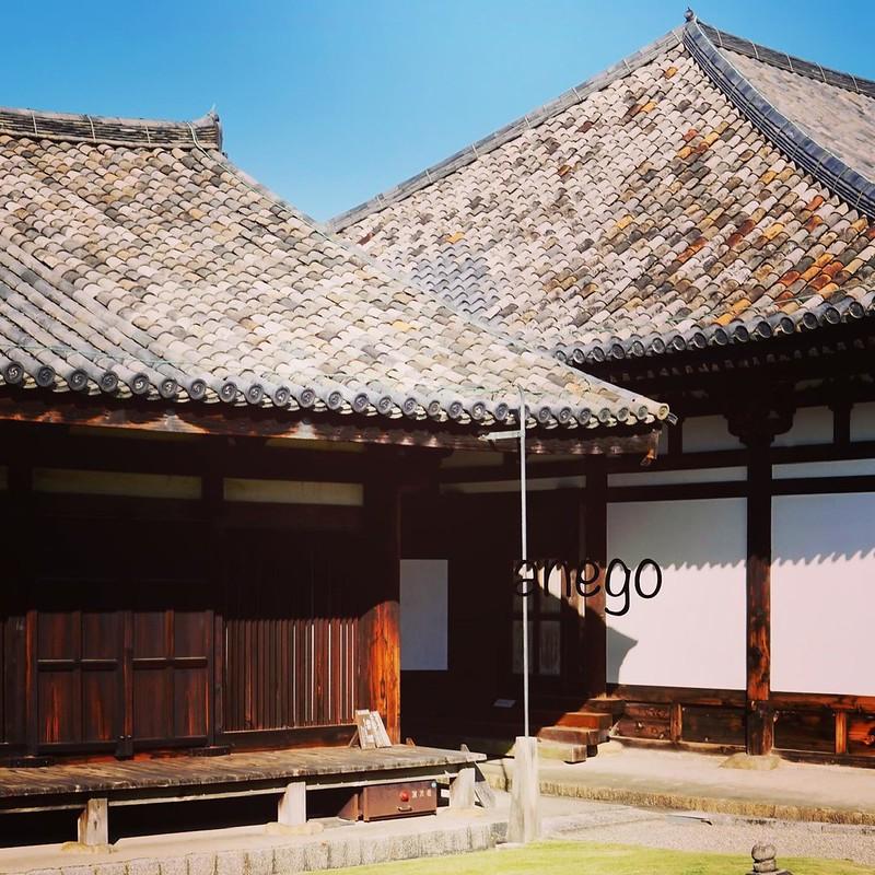 はぁ〜ってため息が出ちゃう。 元興寺の、このモザイクの瓦は飛鳥時代の瓦なの。 ここ元は、蘇我馬子の飛鳥寺。 今回は飛鳥白鳳がメインだったから、ここから始めました。 #わたしは奈良派 #goto奈良 #gotoトラベル #遺跡巡り