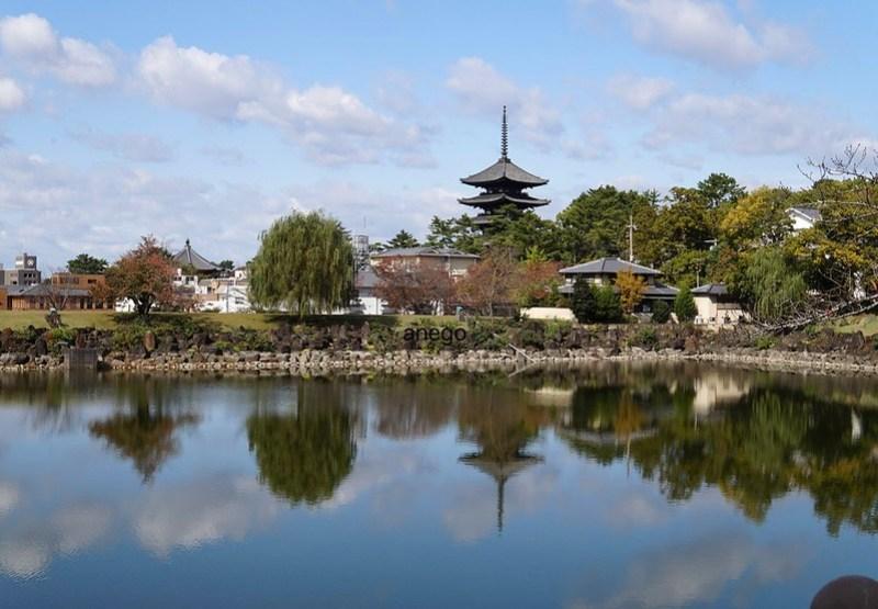 奈良ホテル 荒池 興福寺