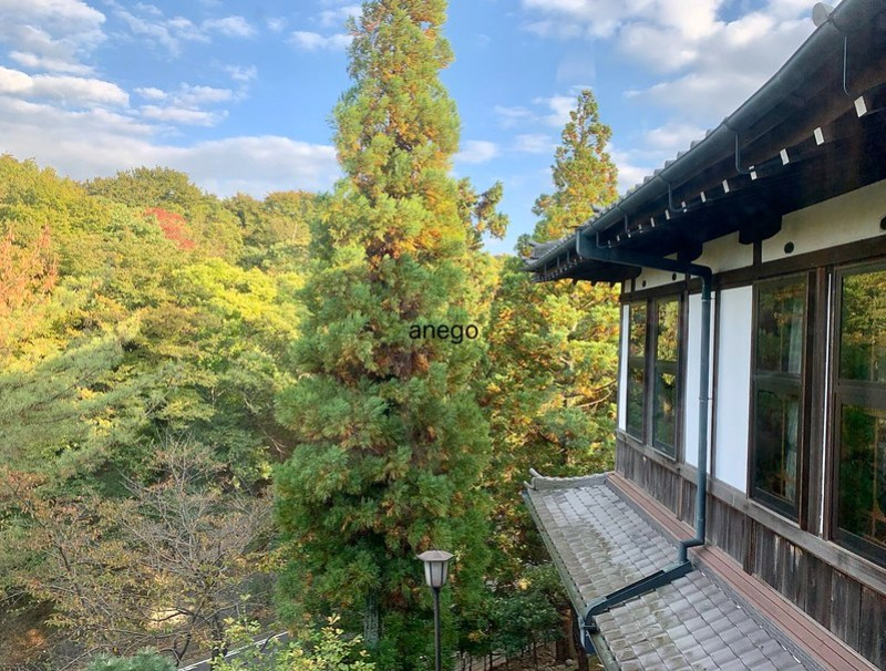 奈良ホテル 窓から