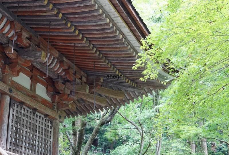 室生寺 本堂の屋根