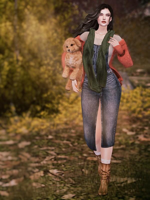 November afternoon walk