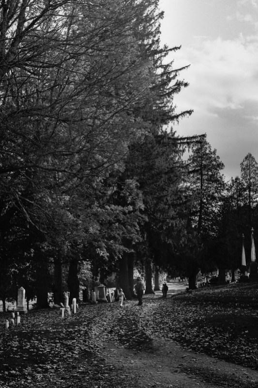 Grave Yard Stroll