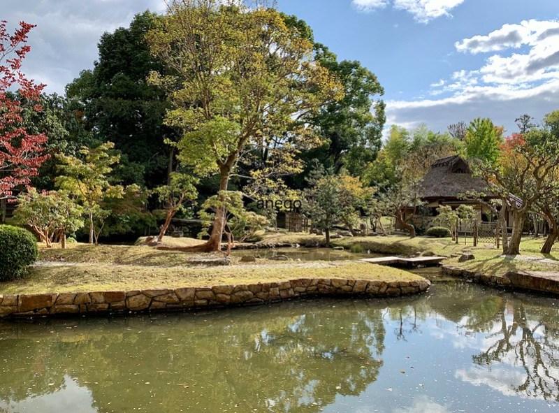 奈良国立博物館 茶室