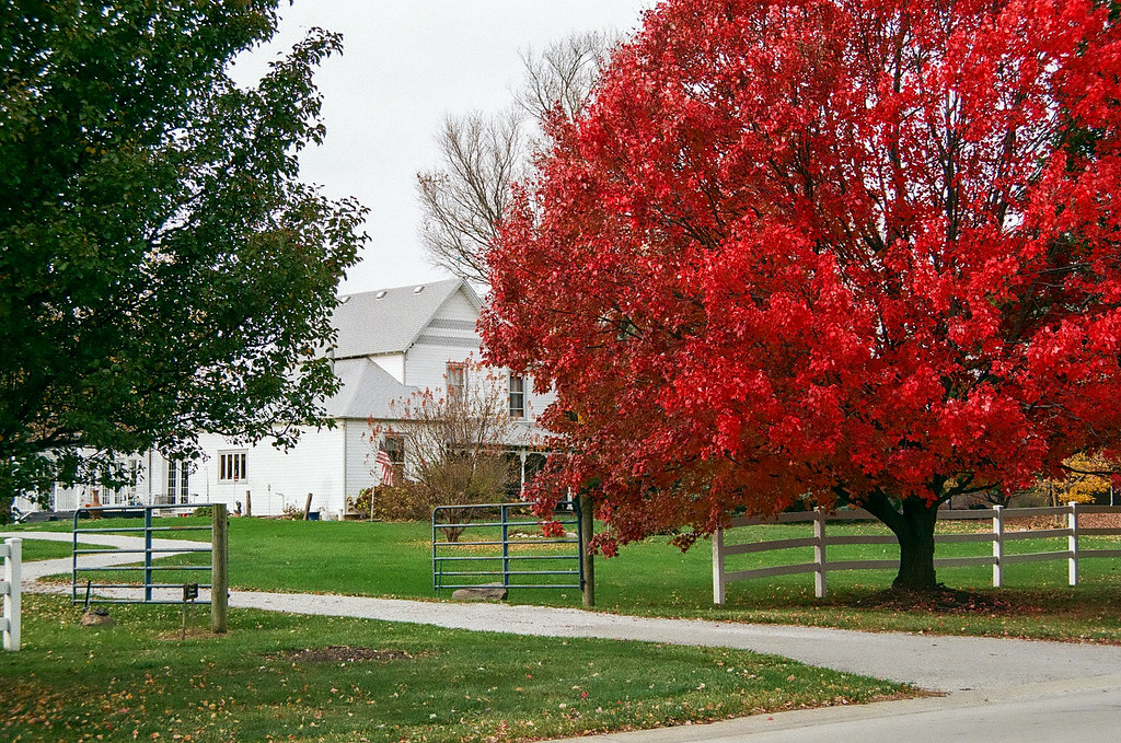 Autumn at the farmhouse