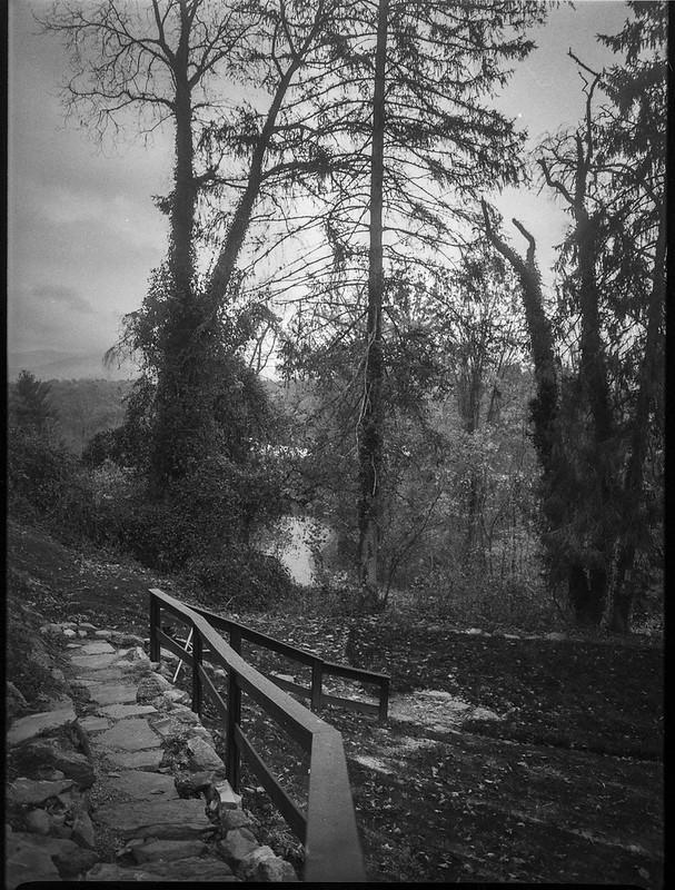 early winter landscape, stone pathway, tall trees, near dusk, grounds, Kenilworth Inn, Asheville, NC, Mamiya 645 Pro, mamiya sekkor 45mm f-2.8, Foma 400, HC-110 developer, 11.10.20
