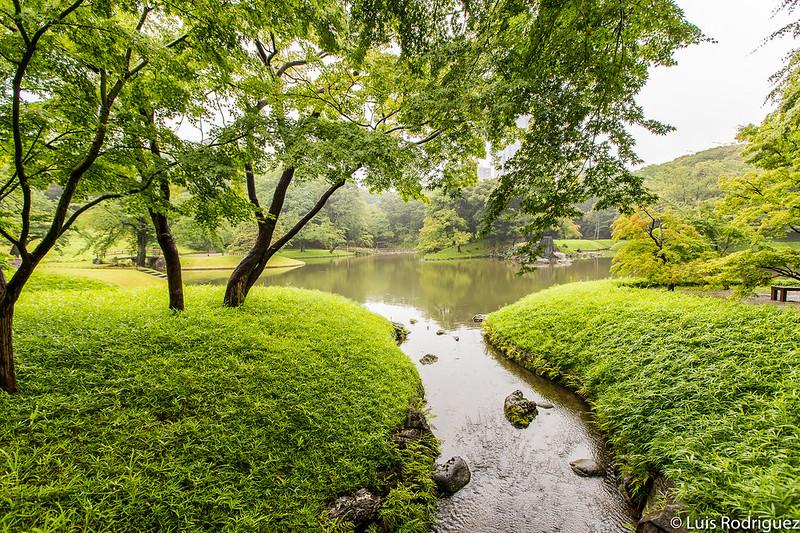 Riachuelos del estanque principal de los jardines Koishikawa Korakuen de Tokio
