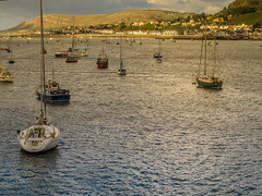 A sun-bathed Deganwy from across the estuary