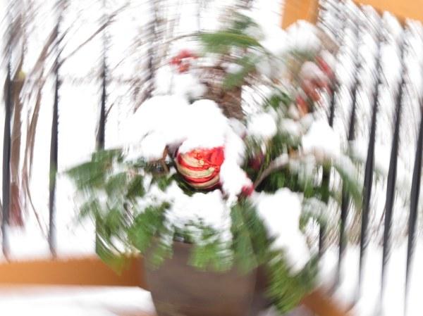 Christmas Planter IMG_1653