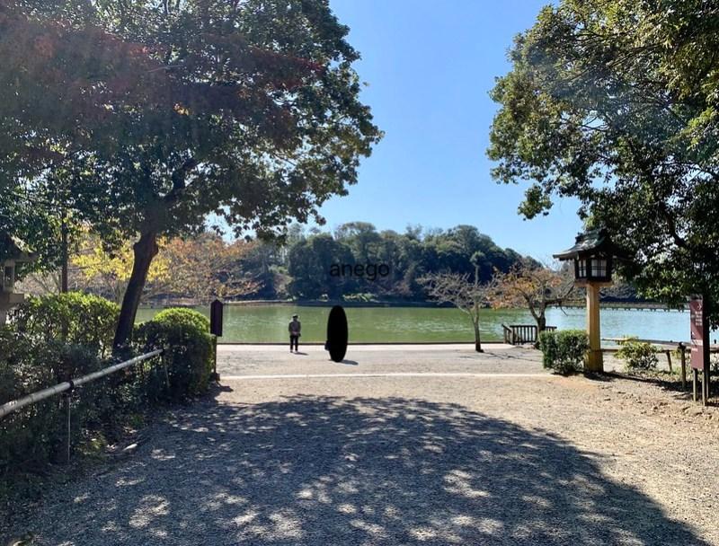 橿原神宮 池
