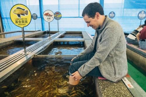 Hot spring fish 溫泉魚, Jiaoxi, Yilan