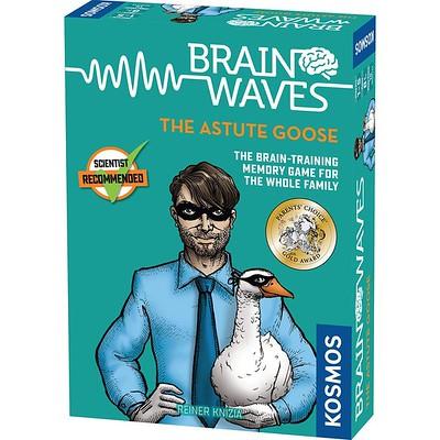 Brainwaves ~ Holiday Gift Ideas #MySillyLittleGang